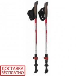 Палки для скандинавской ходьбы Tramp Compact TRR-004
