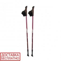 Палки для скандинавской ходьбы Tramp Fitness TRR-011